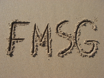 Fmsg_1